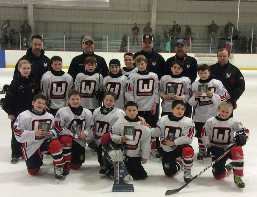 Pictured from the Middlesex Whalers A1 squirt ice hockey team are Owen Lelko of Killingworth (third from the left in the middle row), Samuel Reed from Killingworth (furthest right in the middle row,) and Deep River's Dylan Ingram (fifth from the left in the middle row).