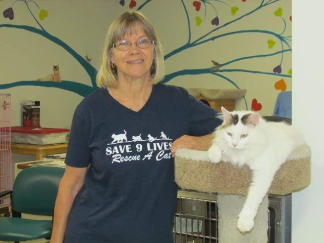 Branford Compassion Club (BCC) Shelter Manager Pat Cotton (and Vitti the kitty, shown here at BCC's Feline Rescue & Adoption Center in North Branford), are hoping the public will come out to the Branford Town Green on Sunday, Oct. 2, to support BCC's Animal Awareness Day. The family fun day includes a Blessing of the Pets, food, activities, live music, pet product vendors, and much more. All proceeds benefit non-profit BCC. Photo by Pam Johnson/The Sound