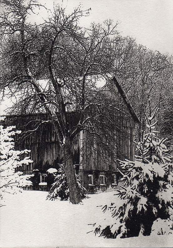 New England Snow, photo polymer etching, by Carol Dunn