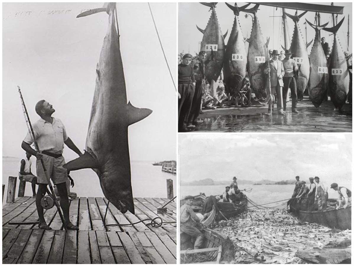 Old scrapbooks containing vintage fishing pictures tell the story from way back when, but there is a different tale to spin these days. Photo illustration courtesy of Captain Morgan