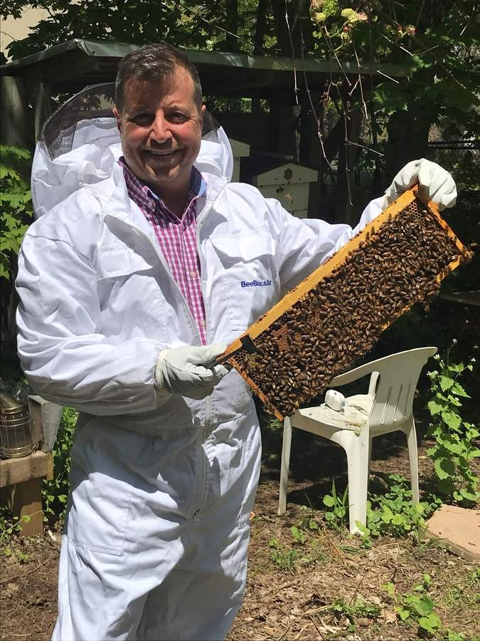 Don Gentile keeps honey bees, like this healthy bunch, in his Branford backyard apiary. Recently, one of his colonies experienced the deaths of thousands of bees, likely due to exposure to toxins in a mosquito control solution applied to a nearby property. Now, in his friendly way, he's working to get the word out about pollinator-friendly options to help keep bees, and other pollinators, safe. Photo by Pam Johnson/The Sound