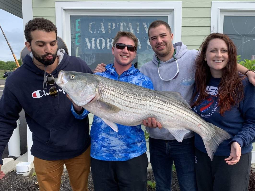 Catching schoolies took on a different twist when Jonah Lewis (second from left) of Madison hooked into this 43-inch striper as friends Angus Culhane (second from right) of Madison and David Weiss (left) and Diane Crabtree (right) of Philadelphia cheered on.  Photo courtesy of Captain Morgan