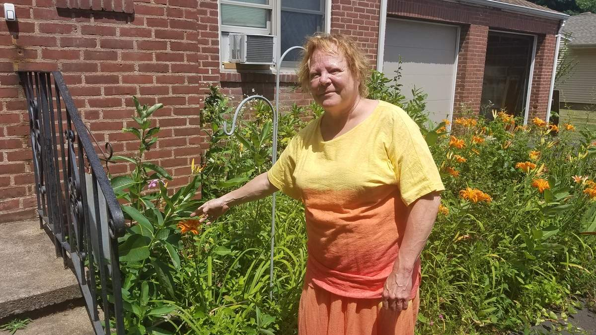 North Haven Land trust member Heidi Boettger preserves important habitats from her own home by growing milkweed, an important source of food for monarch butterflies, which are known to rest in the area on their long migration south. Photo by Nathan Hughart/The Courier