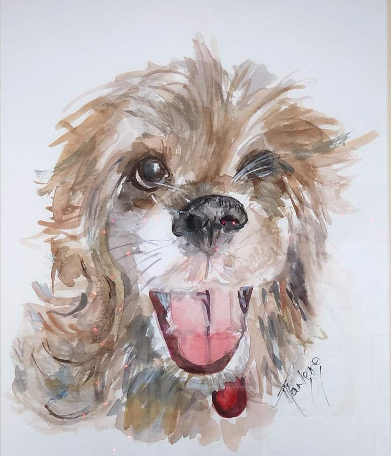 Marlene Sicuranza's watercolor, Fury Rescue Dog, won the most popular award at last year's member show.