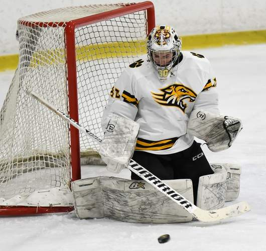 Goalie made 22 saves Eric Dillner and the Tigers made states by earning 8-0 shutout versus Scarsdale, New York on Jan. 17. File photo by Kelley Fryer/The Source