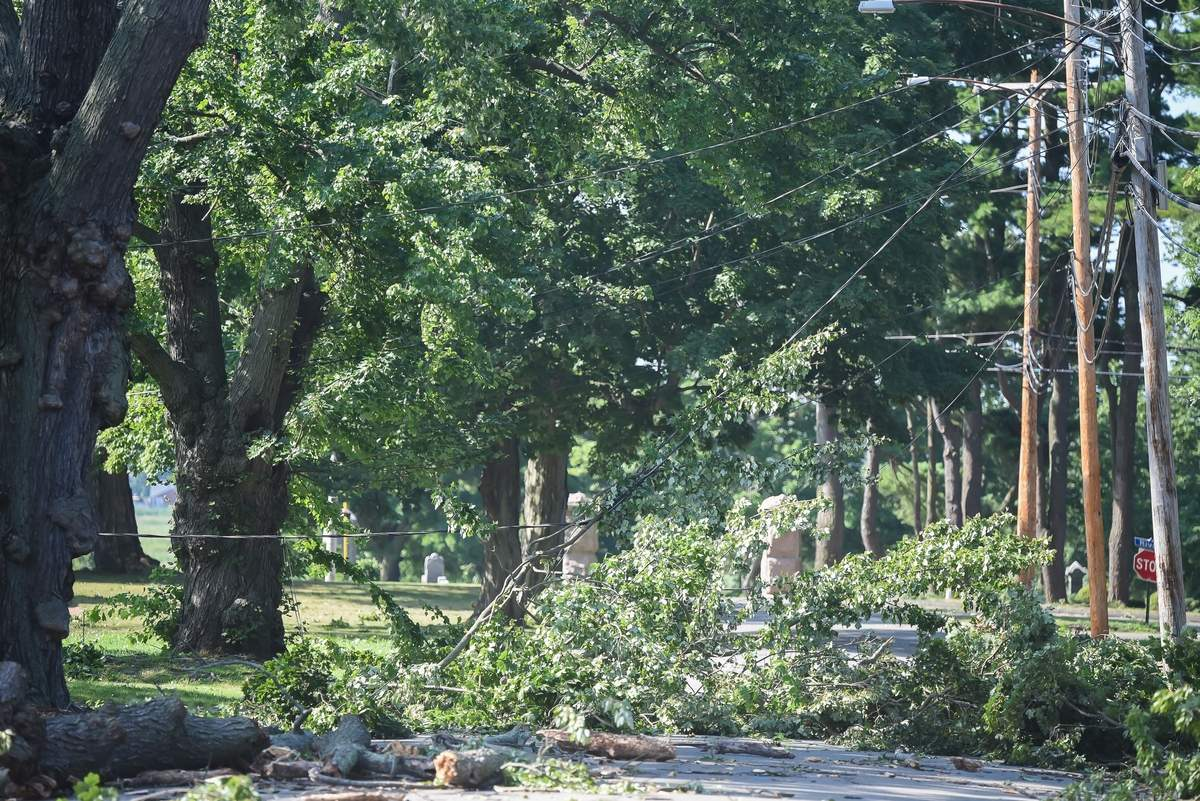 Tropical Storm Isaias damage on the East Haven Town Green. Photo by Kelley Fryer/The Courier