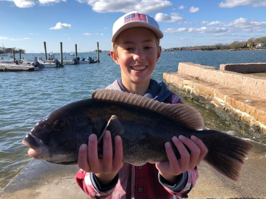 Hunter DaRos, 14, of Branford hooked into this really nice tautog while fishing from his kayak in the Thimble Islands. Photo courtesy of Captain Morgan