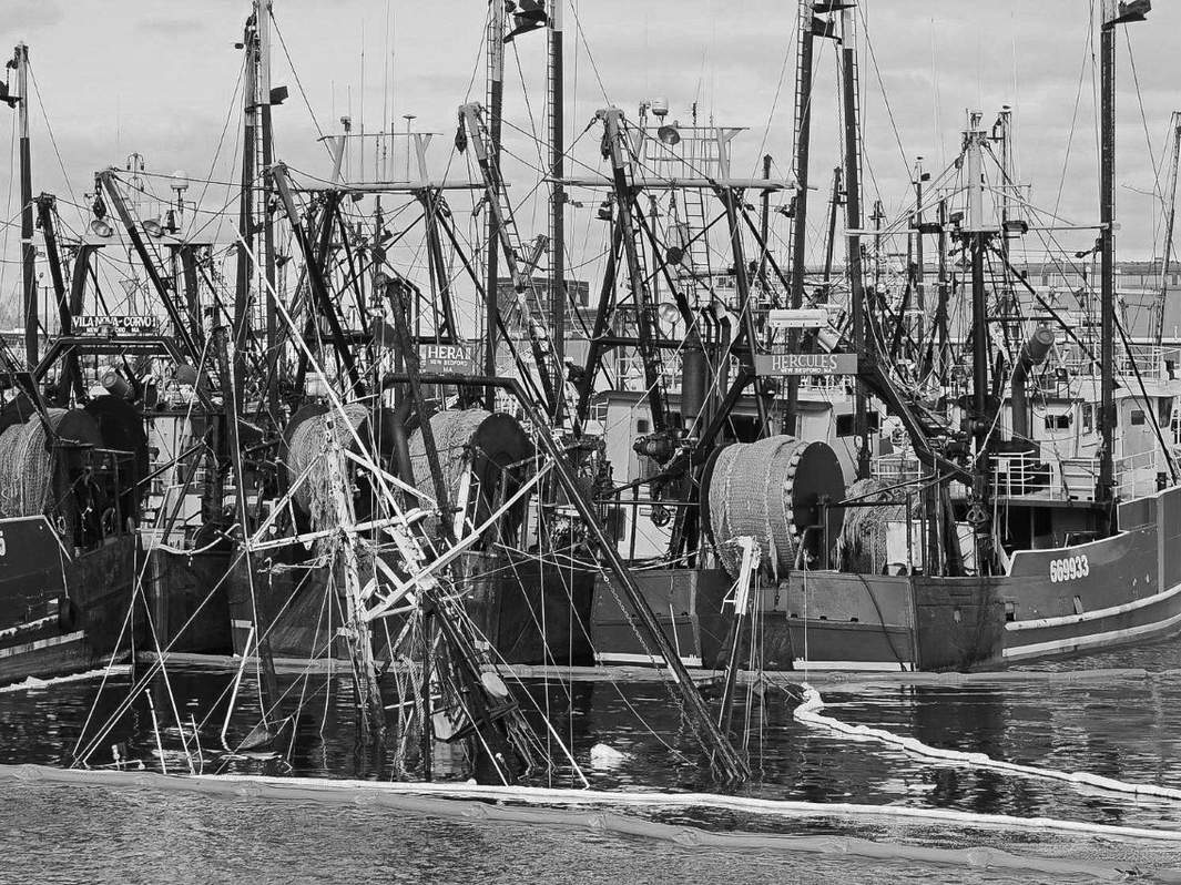 The No. 1 United States commercial fishing port in dollar value 19 years running is New Bedford, Massachusetts—primarily in scallops. Photo courtesy of Captain Morgan