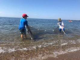 SCIENCE OF SEINING