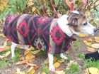 Polar Fleece Dog Jacket Sewing Workshop;