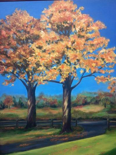 Trees of Connecticut Art Show
