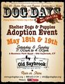 Shelter Dog Adoption Event, Old Saybrook, May 18th & 19th;